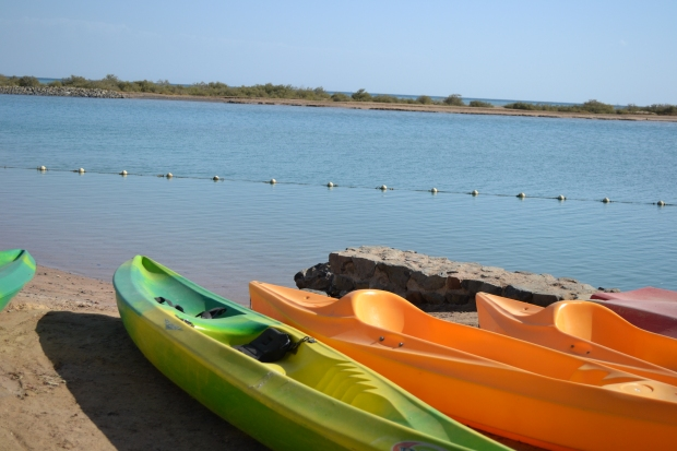 Canoes, kayaks, and paddle boats are available for use for a relatively cheap 50L.E. per hour.