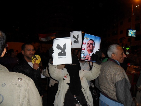 "Surprising: A woman wearing the niqab protesting against Morsi. The sign simply reads ""No."""