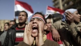 The Egyptian Brain Drain